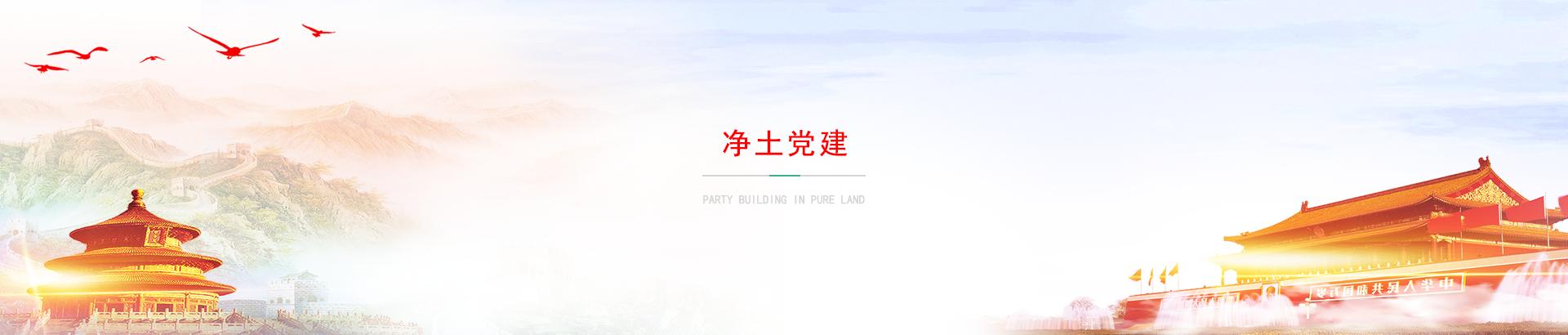 竞技宝app苹果官方下载党建